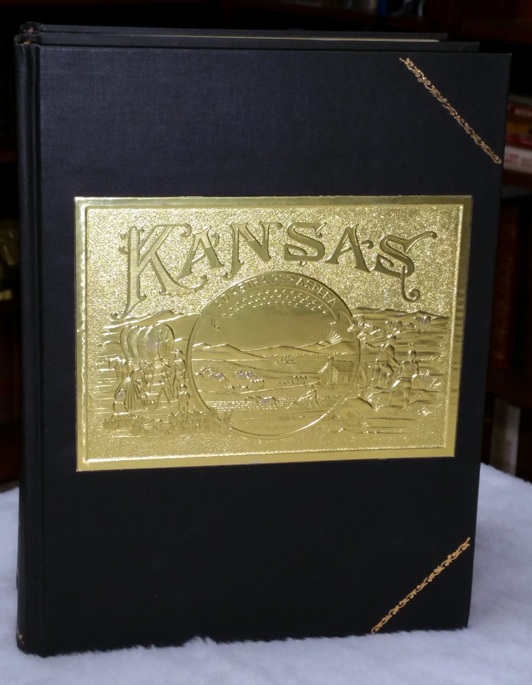 Cover of History Of The State Of Kansas